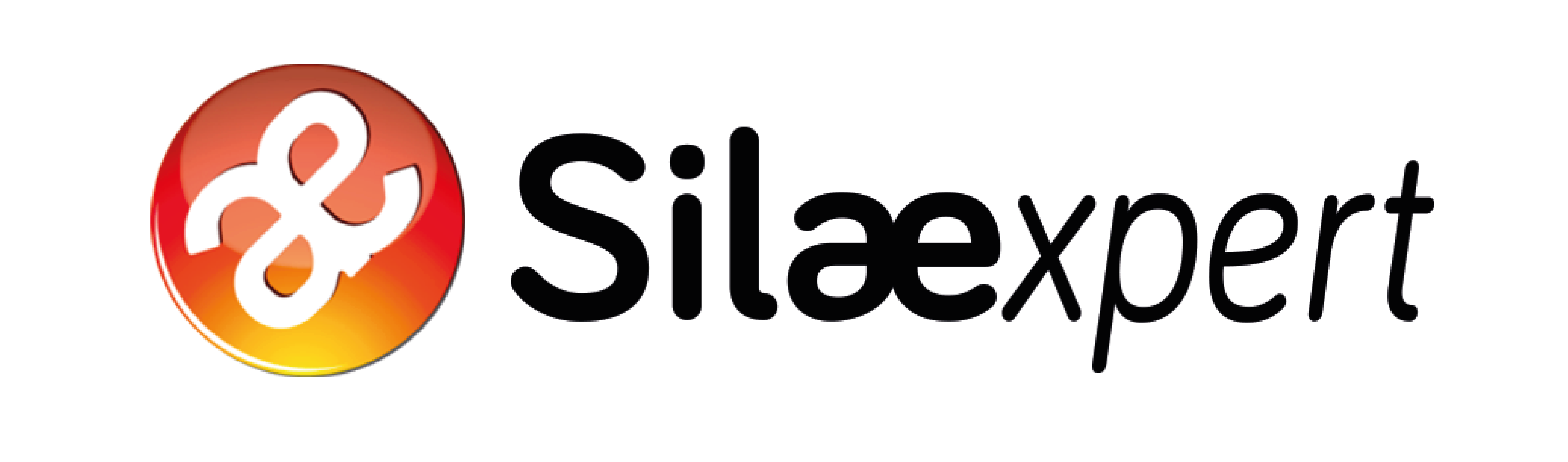 logo Silaexpert